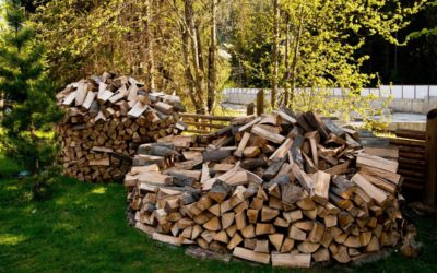 "Stock Up on ""Seasoned"" Wood"